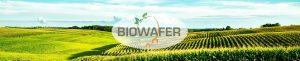 header_biowafer